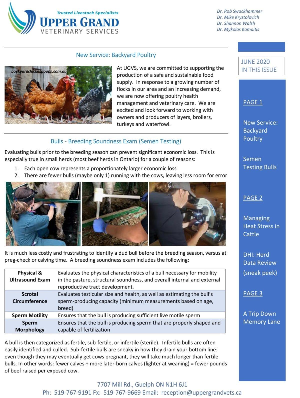 UGVS-Newsletter_June-2020-1-copy-1200x1588.jpg
