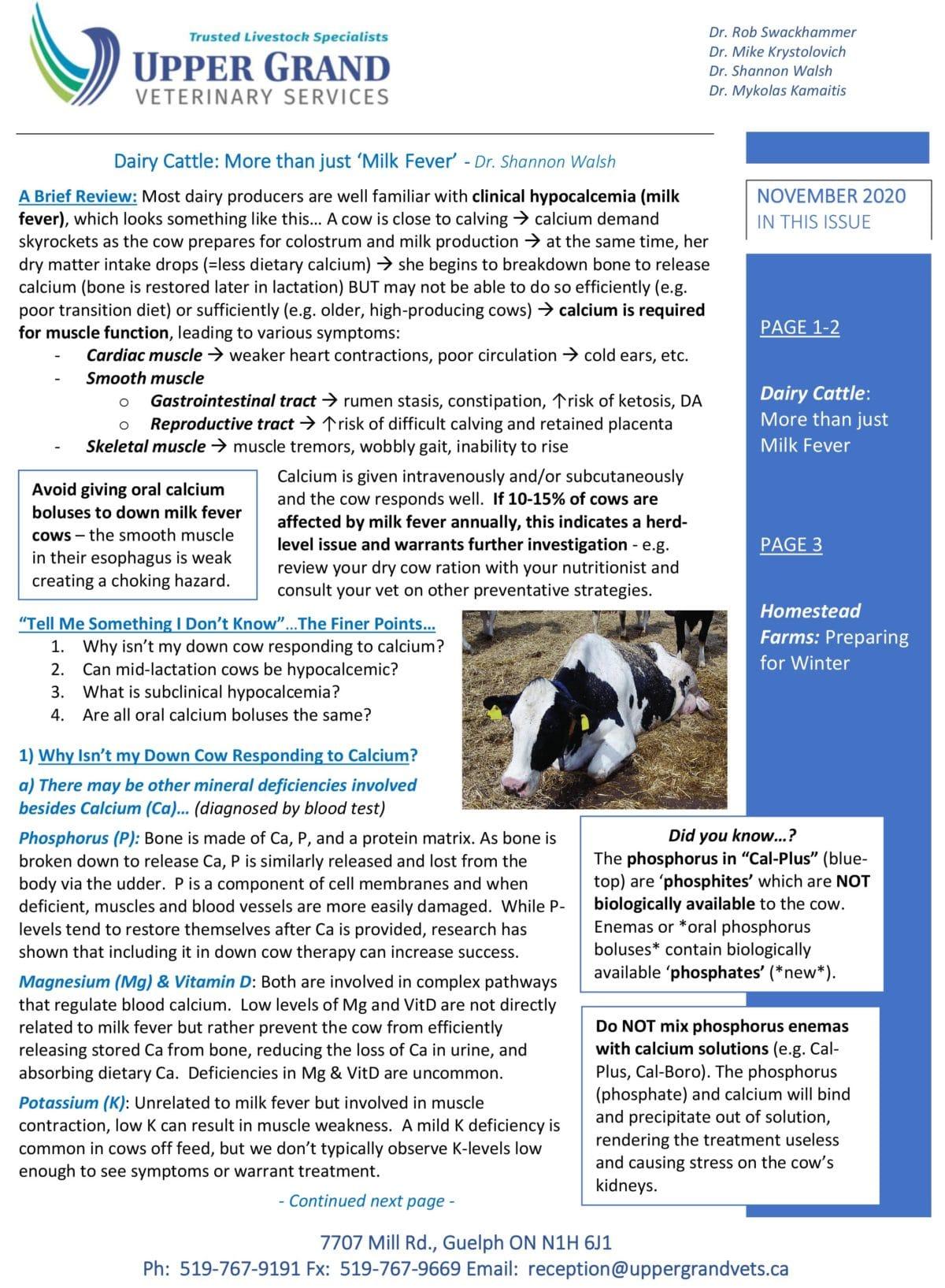 UGVS-Newsletter_Nov-2020-1-copy-1200x1635.jpg